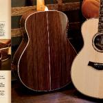 Pelajari Ebook Lengkap jenis kayu gitar akustik Taylor