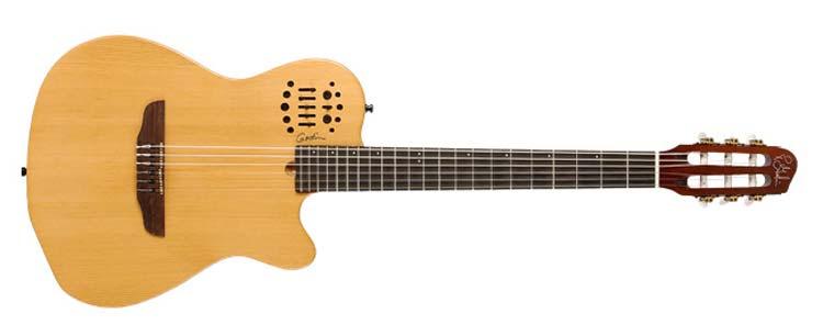 gitar akustik godin