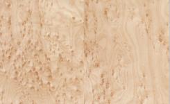 Birds eye maple untuk kayu gitar elektrik
