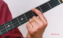 cara memegang bass dengan benar