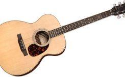 gitar akustik larrivee