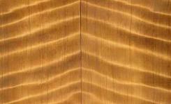 jenis kayu untuk gitar elektrik curly wood
